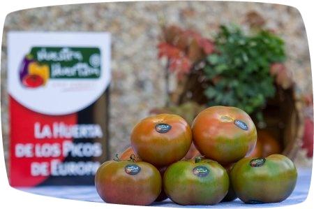 Tomate Caramba